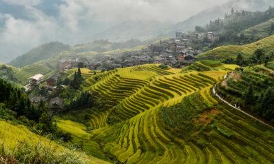 Är Vietnam nästa emerging market?