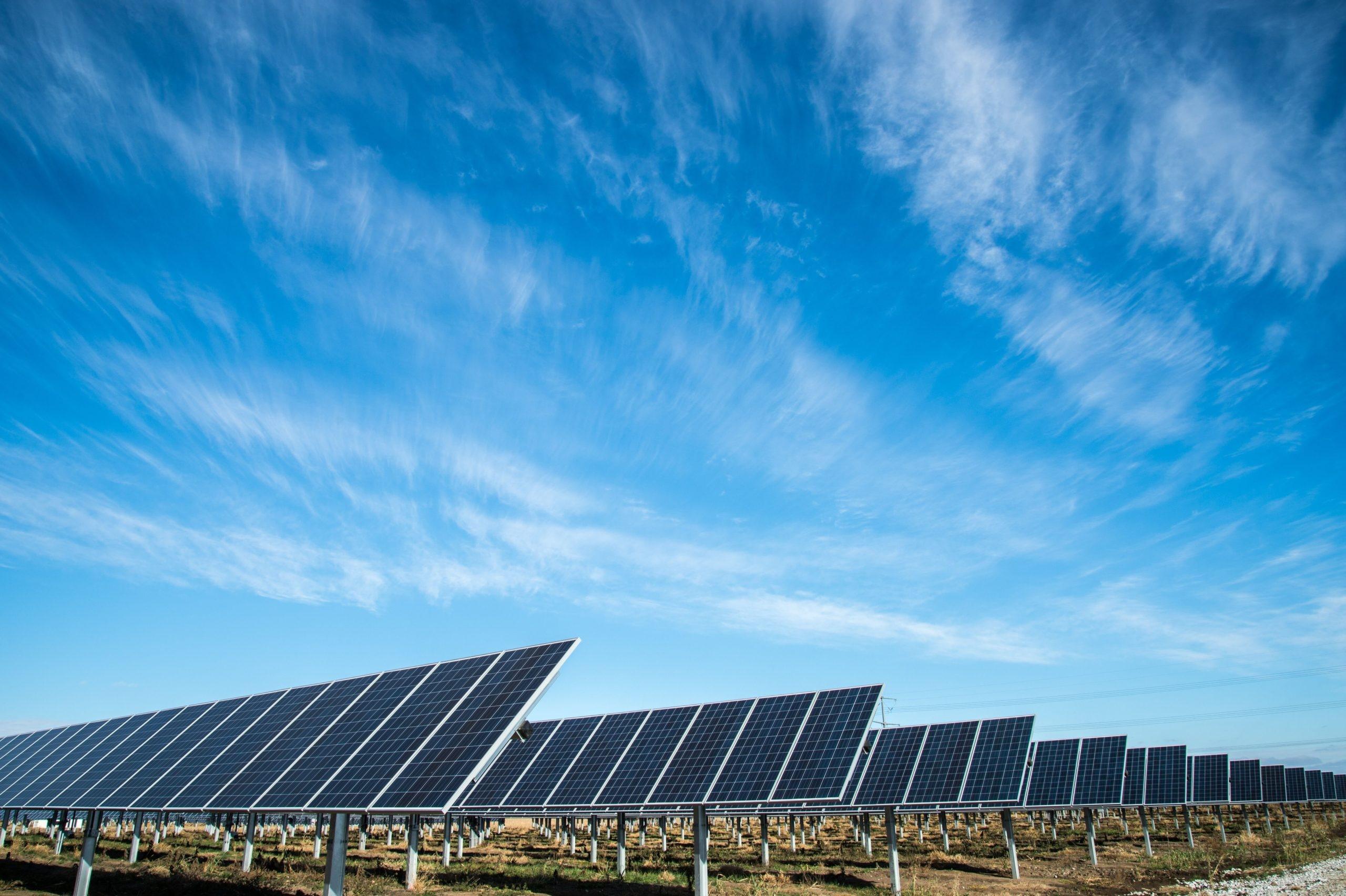 Storebrand Fornybar Energi har lyckats väl under sitt första år
