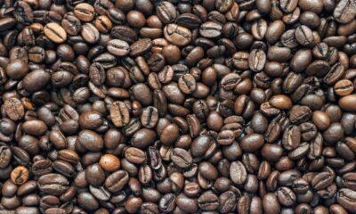 Brasiliens kaffeexport lider av brist på containers