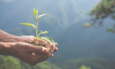 Europas största utdelningsfond med ESG-inriktning passerar €1md