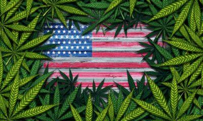 Virginia är den sextonde amerikanska staten som har antagit en lagstiftning om att legalisera marijuana för vuxna, även om försäljningen inte börja