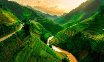 Vietnam bästa börsen i veckan som gick - 53 index så kan du investera med ETF
