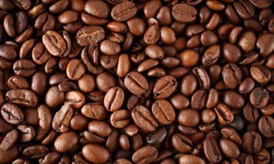 Kaffecertifikat rusar efter sex veckors nedgång