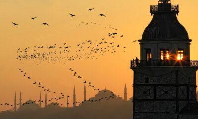 Turkiska ETFer som iShares MSCI Turkey ETF (NasdaqGM: TUR) har tappat över 20% sedan president Recep Tayyip Erdogan avskedade Naci Agbal,