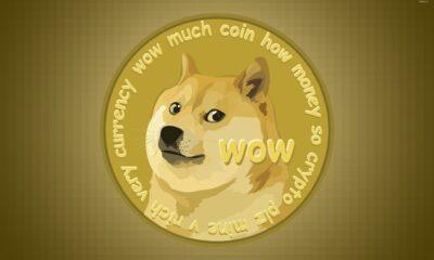 Efter att de dagliga transaktionerna i kryptovalutan har minskat med 93 procent undera många om de stora spelarna har tröttnat på Dogecoin. Efter deras rekordhöga aktivitet bestämde sig stora Dogecoin-innehavare