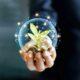 När Fondbolagens förening för fjärde året i rad genomför en undersökning om spararnas attityder till hållbara fonder tror allt fler på fondernas möjligheter att påverka