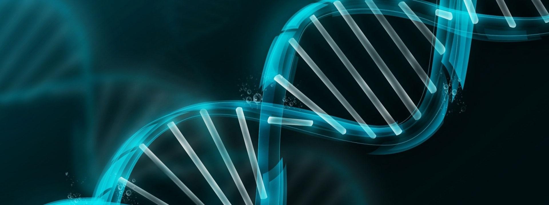 Global X Genomics & Biotechnology ETF (Nasdaq: GNOM ETF) spårar ett index över globala bioteknikaktier, utvalda och viktade efter marknadsvärde.