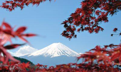 SPDR MSCI Japan UCITS ETF (ZPDJ ETF) är en europeisk börshandlad fond för den som vill ha exponering mot japanska aktier. ZPDJ har ISIN IE00BZ0G8B96