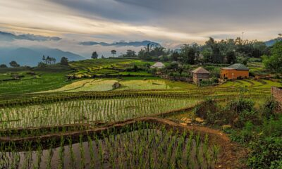 En börshandlad fond med fokus på Vietnam VanEck Vectors Vietnam ETF (NYSEArca: VNM) har backat under den senaste månaden och trimmat sin årliga vinst till cirka en procent,