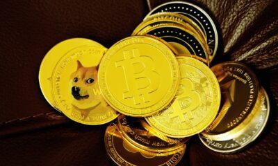 Coinbase kunder kan nu köpa Dogecoin. Dogecoin är den sjätte kryptovalutan som integreras med Coinbases e-handelsplattform. Meddelat på Twitter onsdag placerar Coinbase DOGE vid sidan av bitcoin,