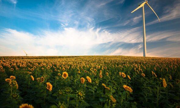 HANetf S&P Global Clean Energy Select HANzeroTM UCITS ETF (ZER0 ETF) är börshandlad fond som kanadensiska Purpose Investments lanserat i Europa tillsammans med HANetf.