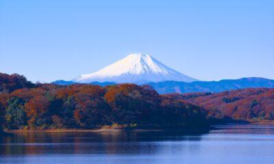 Lyxor Core MSCI Japan (DR) UCITS ETF - Acc (LCUJ ETF) investerar i i aktier på den japanska aktiemarknaden. Utdelningen i fonden återinvesteras