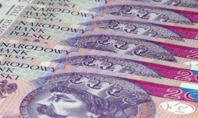 Polens officiella valuta är polska zloty, representerad av Forex-symbolen PLN. Det finns självklart valutahandel med PLN. Som en decimalbaserad valuta delas varje Zloty upp i 100 Grosz, och Zloty representeras vanligtvis av symbolen zł.